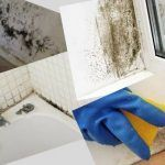 Cómo eliminar el moho en las paredes